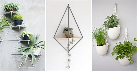 10 Modern Wall Mounted Plant Holders To Decorate Bare
