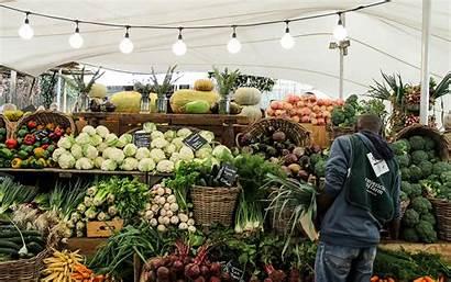 Market Farm Oranjezicht Cape Town Visit Capetown