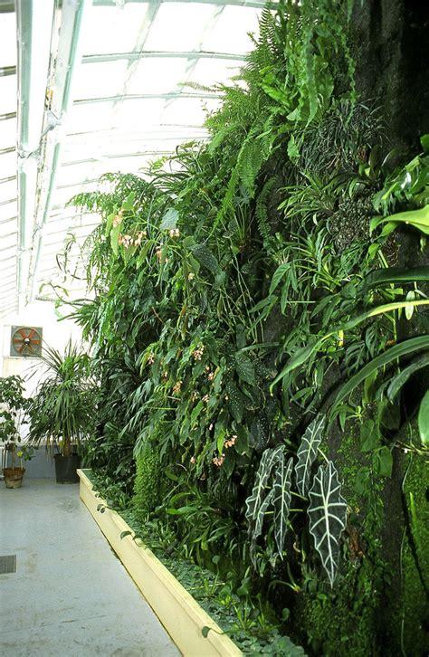 serre de jardin adossee au mur serre de jardin adossee au mur galerie des id 233 es de design de maison