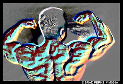 Muscle Man Bodybuilder 5