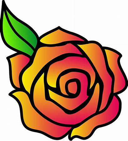 Rose Pink Clipart Clip Yellow
