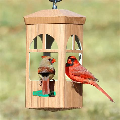 duncraft com split window bird feeder