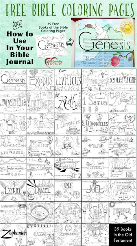 books   bible coloring pages  homeschool