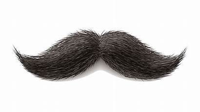 Mustache Moustache Transparent Clipart Background Drawing Hair