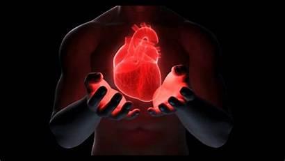 Heart Disease Hearts King
