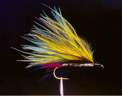 Streamer Streamers Fly Fishing Yellow Marabou Planettrout