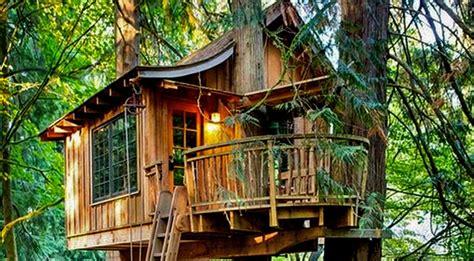 amusement parks news cool tree house ideas  headrush technologies