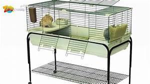Cage A Cochon D Inde : quelle cage pour cochon d 39 inde choisir youtube ~ Dallasstarsshop.com Idées de Décoration