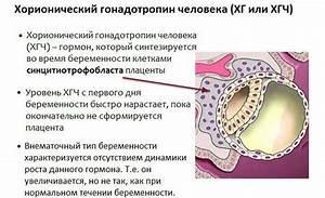 Геморрой лечение отзывы фото до и после