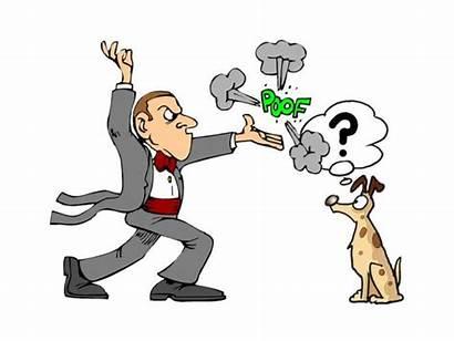 Imagery Mental Consciousness Tricks Magic Dogs Animal