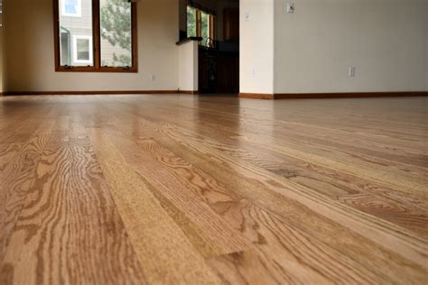 golden oak stain red oak  flooring artists