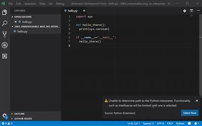 Python Interpreter 2983 Server Vscode Actionable Unable