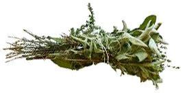 bouquet garni en cuisine blanquette de veau recette companion moulinex companionetmoi