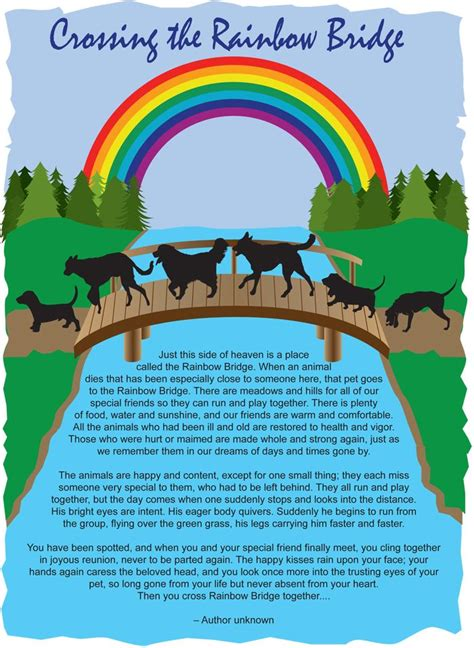 rainbow bridge dog ideas  pinterest rainbow