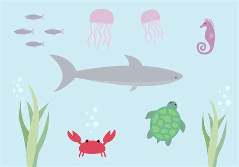 aquatic life  vector art   downloads