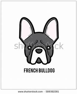 French Bulldog Face Vector