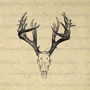Printable Deer Skull Graphic Deer Digital Image Antlers ...