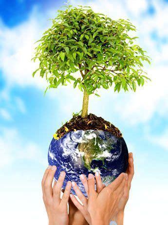 imagens meio ambiente
