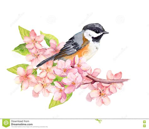 oiseau sur la branche de fleur avec des fleurs watercolor