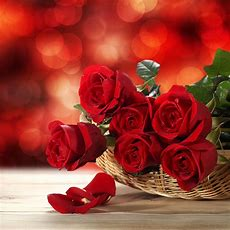 Valentine's Day Flowers Guide