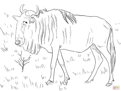 Realistic Blue Wildebeest Coloring Page