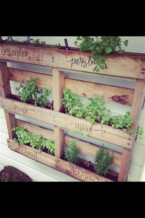 best 25 herb planters ideas on growing herbs