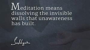 Sadhguru's Quotes on Meditation - The Isha Blog