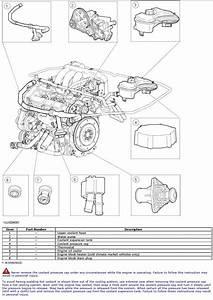 Test S  For Coolant Overflow Tank  U0026 Pressure Cap  - Jaguar Forums