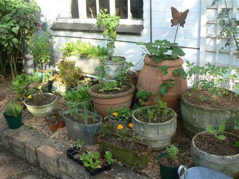 kitchen garden ideas container herb garden garden ideas