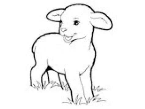 lambs semester begins elmhurst il patch 501 | 2016015693ff78440c4