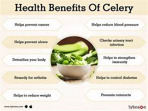 Benefits Of Celery And Its Side Effects