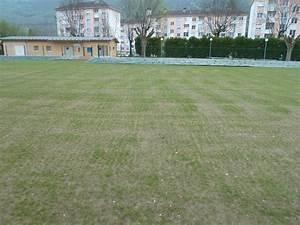 Semer Gazon Periode : semis de perforation semer une pelouse planter du ~ Melissatoandfro.com Idées de Décoration