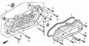 Enotecaombrerosseit2012 Honda Ruckus Engine Diagram Sewingmachinediagram Enotecaombrerosse It