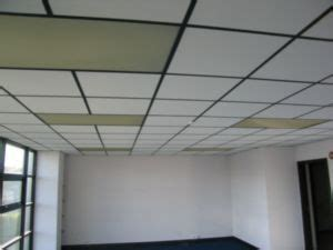 painting   called  suspended ceiling system