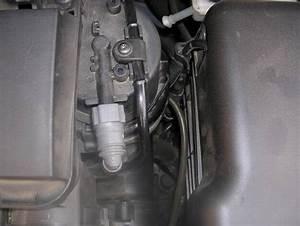 Purge Filtre A Gasoil : purge filtre gasoil 206 1 4 hdi peugeot m canique ~ Gottalentnigeria.com Avis de Voitures