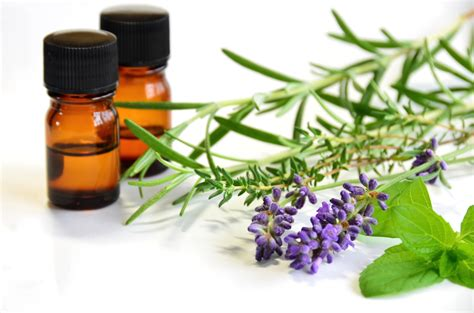 5 Essential Oils For Weight Loss That Will Totally Help