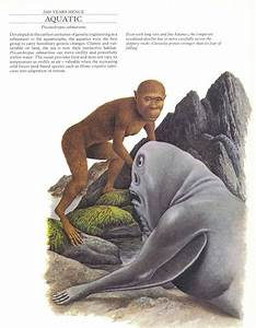Dougal Dixon - Man After Man : An Anthropology of the Futu ...