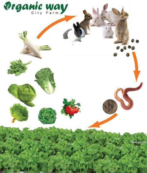 เกษตรอินทรีย์ - farmthailand.com
