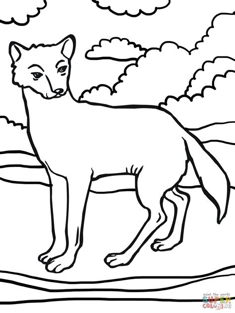 dingo dog coloring page  printable coloring pages