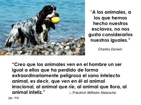 imagenes de animales  mensajes motivadores  el