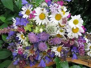 Beau Bouquet De Fleur : quoi de plus beau qu 39 un bouquet de fleurs des champs ~ Dallasstarsshop.com Idées de Décoration