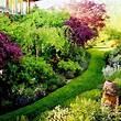 Garden Tour: The Everything Garden