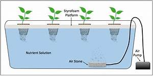 What Are The Types Of Hydroponics Systems