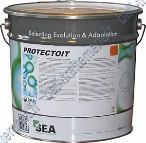 Peinture Pour Toiture : protectoit anthracite ~ Melissatoandfro.com Idées de Décoration