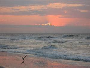 Sunset Beach, NC : Early Sunrise photo, picture, image ...
