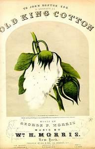 King Of Cotton : penn special collections keffer old king cotton ~ Nature-et-papiers.com Idées de Décoration
