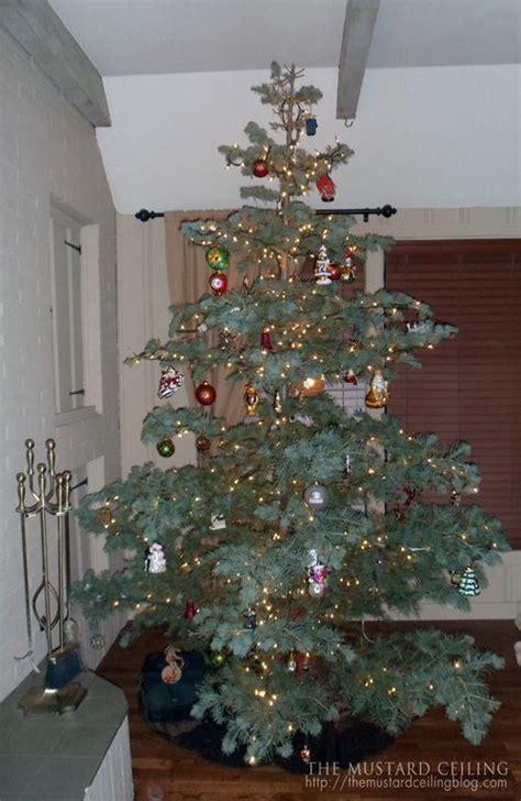 fir christmas tree ideas lighting tips for your tree noble fir tree tree