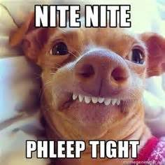Nighty Night Meme - funny pictures of the day 40 pics funny pictures pinterest pictures of punch and le