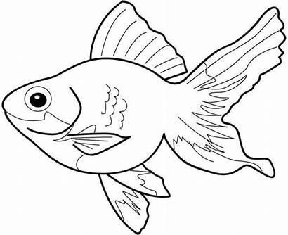 Coloring Pages Fish Sheets Colouring Sheet Goldfish