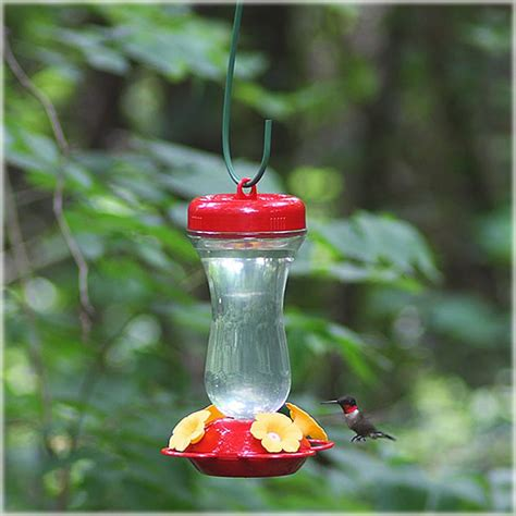 best hummingbird feeder pet top fill glass hummingbird feeder 16 oz 131tf